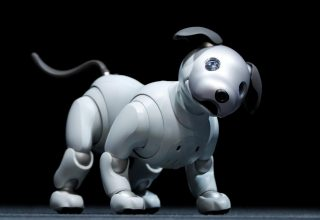 Sony ringjall qenin robot AIBO